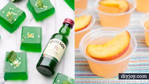 35 Best Jello Shot Recipes To Serve At Your Next Party | DIY Joy Projects and Crafts Ideas