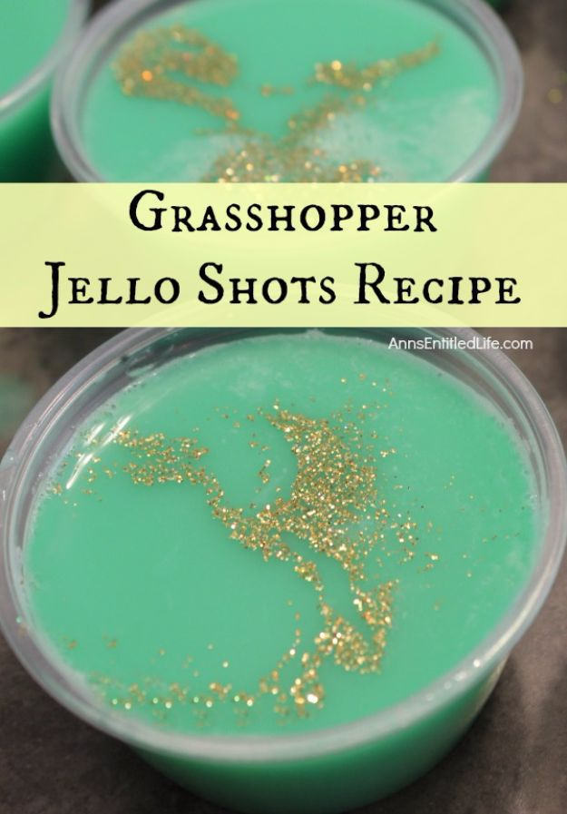 Best Jello Shot Recipes - Grasshopper Jello Shots - Easy Jello Shots Recipe Ideas with Vodka, Strawberry, Tequila, Rum, Jolly Rancher and Creative Alcohol - Unique and Fun Drinks for Parties like Whiskey Fireball, Fall Halloween Versions, Malibu, 4th of July, Birthday, Summer, Christmas and Birthdays http://diyjoy.com/best-jello-shot-recipes