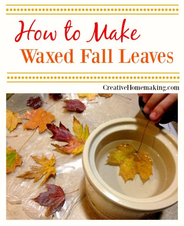 Best Crafts for Fall - Waxed Fall Leaves - DIY Mason Jar Ideas, Dollar Store Crafts, Rustic Pumpkin Ideas, Wreaths, Candles and Wall Art, Centerpieces, Wedding Decorations, Homemade Gifts, Craft Projects with Leaves, Flowers and Burlap, Painted Art, Candles and Luminaries for Cool Home Decor - Quick and Easy Projects With Step by Step Tutorials and Instructions http://diyjoy.com/best-crafts-for-fall