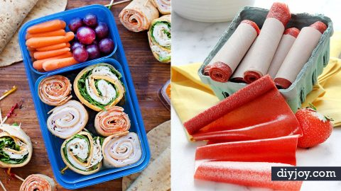 50 Easy Back To School Lunches and Snacks | DIY Joy Projects and Crafts Ideas