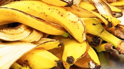 You Will Never Throw Away Banana Peels After Watching This! | DIY Joy Projects and Crafts Ideas