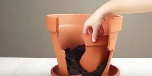Don't Throw Broken Clay Pots Away, Do This Instead!