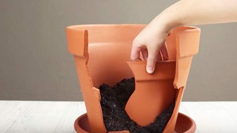 Don't Throw Broken Clay Pots Away, Do This Instead! | DIY Joy Projects and Crafts Ideas
