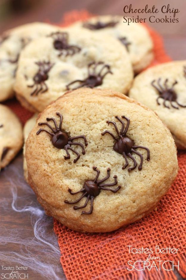 Cute Halloween Cookies - Chocolate Chip Spider Cookies - Easy Recipes and Cookie Tutorials for Making Quick Halloween Treats - Spooky DIY Decorated Ghosts, Pumpkins, Bats, No Bake, Spiders and Spiderwebs, Tombstones and Healthy Options, Kids and Teens Cookies for School http://diyjoy.com/halloween-cookies-ideas
