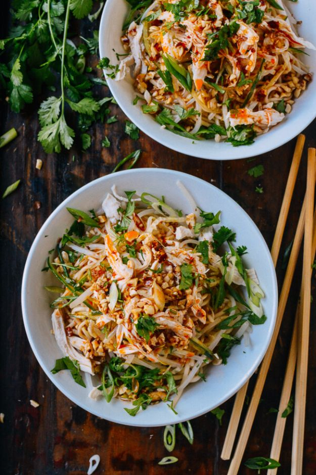 Back to School Lunch Ideas - Cold Noodles With Shredded Chicken - Quick Snacks, Lunches and Homemade Lunchables - Bento Box Style Lunch for People in A Hurry - Fast Lunch Recipes to Pack Ahead - Healthy Ideas for Kids, Teens and Adults
