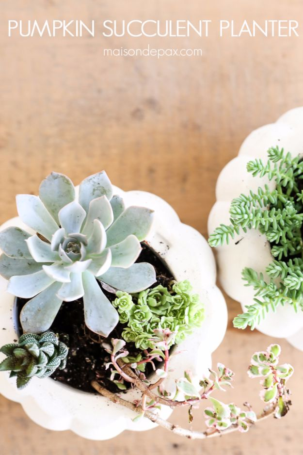 DIY Fall Decorating Ideas - Best Fall Crafts - Creative Fall Decor Projects - Table Runner, Pumpkin Art, Centerpieces, Wreaths- Fall Succulent Planters