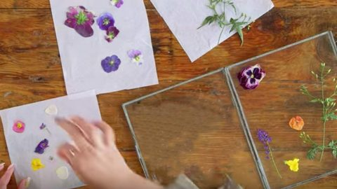 She Presses Flowers In Books And Places Them On Glass For An Amazing Piece Of Art! | DIY Joy Projects and Crafts Ideas