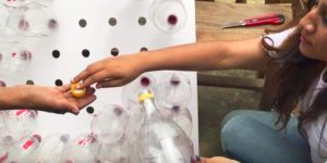 They Cleverly Put Plastic Bottles In The Holes On The Board…You Won't Believe Why!