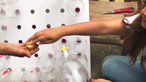 They Cleverly Put Plastic Bottles In The Holes On The Board…You Won't Believe Why! | DIY Joy Projects and Crafts Ideas