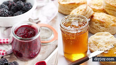 33 Homemade Jam and Jelly Recipes | DIY Joy Projects and Crafts Ideas