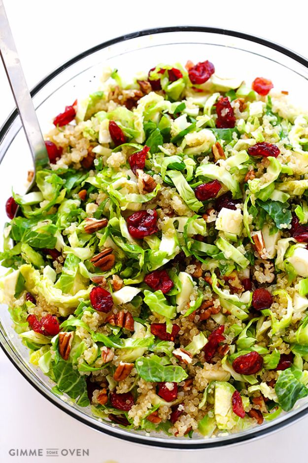 Healthy Thanksgiving Recipes - Brussels Sprouts, Cranberry And Quinoa Salad - Low fat Versions of Your Favorite Holiday Recipe for Turkey, Stuffing, Gravy, Pie and Desserts, Appetizers, Vegetables and Side Dishes like Spinach, Broccoli, Cranberries, Mashed Potatoes, Sweet Potatoes and Green Beans - Easy and Quick Last Minute Thanksgiving Recipes for Low Carb, Low Fat and Clean Eating Diets http://diyjoy.com/healthy-thanksgiving-recipes