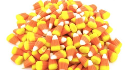 If You Love Candy Corn, You Have To See This Genius Halloween Decor Idea! | DIY Joy Projects and Crafts Ideas
