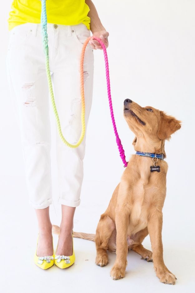 Last Minute Christmas Gifts - DIY Technicolor Dog Leash - Quick DIY Gift Ideas and Easy Christmas Presents To Make for Mom, Dad, Family and Friends - Dollar Store Crafts and Cheap Homemade Gifts