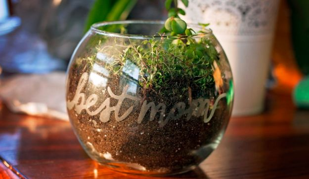Cool Gifts to Make For Mom - Etched Glass Terrarium - DIY Gift Ideas and Christmas Presents for Your Mother, Mother-In-Law, Grandma, Stepmom - Creative , Holiday Crafts and Cheap DIY Gifts for The Holidays - Thoughtful Homemade Spa Day Gifts, Creative Wall Art, Special Ideas for Her - Easy Xmas Gifts to Make With Step by Step Tutorials and Instructions http://diyjoy.com/cheap-holiday-gift-ideas-to-make