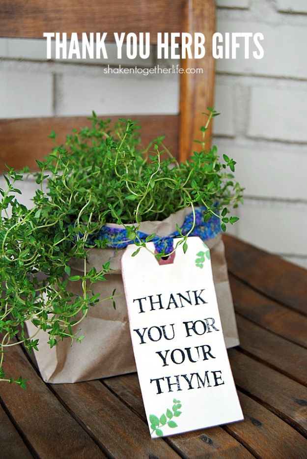 Cheap DIY Gifts and Inexpensive Homemade Christmas Gift Ideas for People on A Budget - Thank You Herb Gifts - To Make These Cool Presents Instead of Buying for the Holidays - Easy and Low Cost Gifts for Mom, Dad, Friends and Family - Quick Dollar Store Crafts and Projects for Xmas Gift Giving #gifts #diy