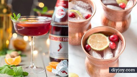 36 Best Drink Recipes For Your New Year's Eve Party | DIY Joy Projects and Crafts Ideas