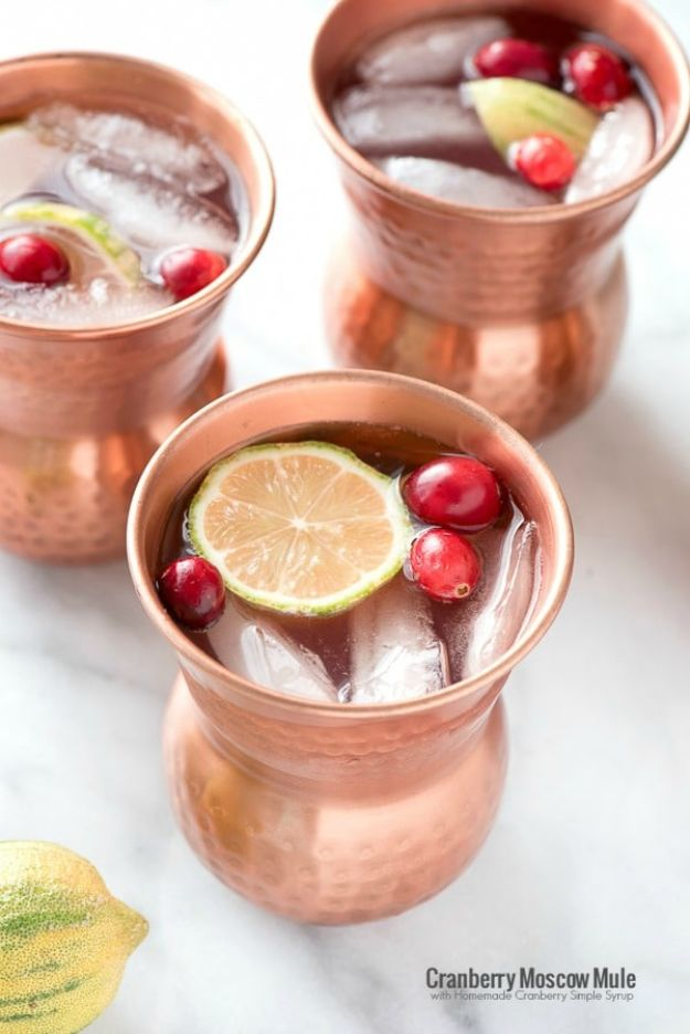 Best Drink Recipes for New Years Eve - Cranberry Moscow Mule with Homemade Cranberry Simple Syrup - Creative Cocktails, Drinks, Champagne Toasts, and Punch Mixes for A New Year's Eve Party - Ideas for Serving, Glasses, Fun Ideas for Shots and Cocktails - Easy Vodka Recipes, Non Alcoholic, Whisky Rum and Party Punches #newyearseve