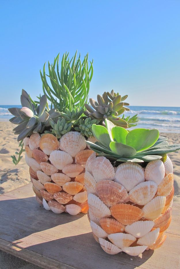 DIY Ideas With Sea Shells - DIY Seashell Planter - Best Cute Sea Shell Crafts for Adults and Kids - Easy Beach House Decor Ideas With Sand and Large Shell Art - Wall Decor and Home, Bedroom and Bath - Cheap DIY Projects Make Awesome Homemade Gifts http://diyjoy.com/diy-ideas-sea-shells