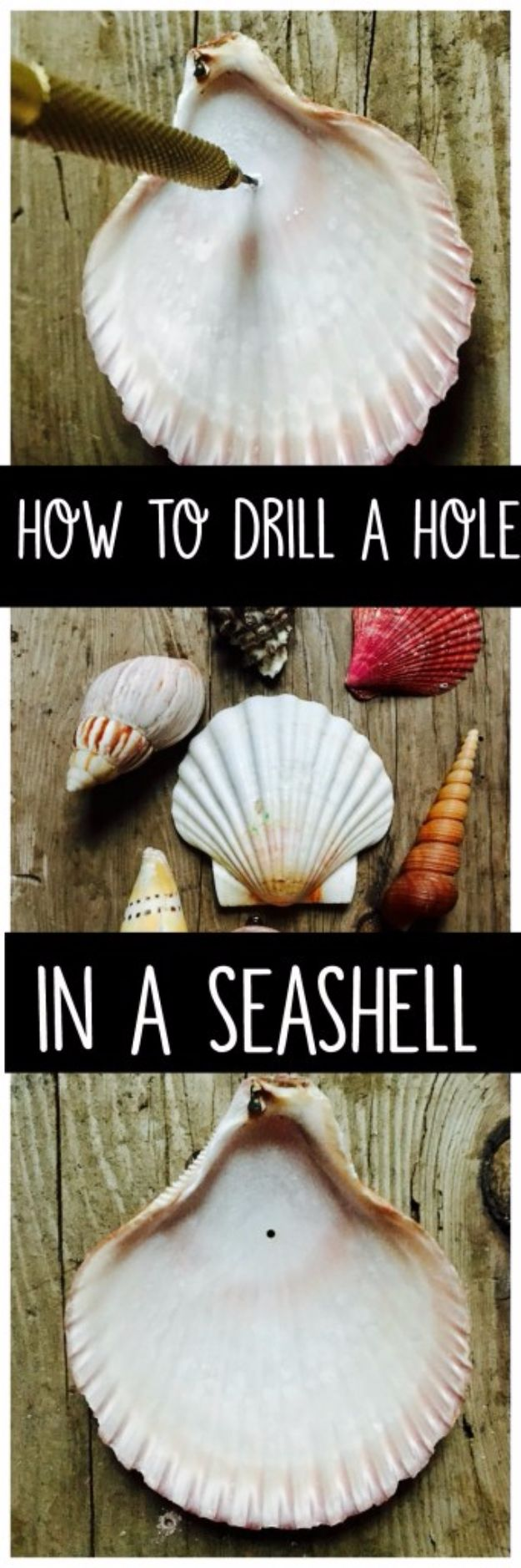 DIY Ideas With Sea Shells - Drill A Hole In A Seashell - Best Cute Sea Shell Crafts for Adults and Kids - Easy Beach House Decor Ideas With Sand and Large Shell Art - Wall Decor and Home, Bedroom and Bath - Cheap DIY Projects Make Awesome Homemade Gifts http://diyjoy.com/diy-ideas-sea-shells