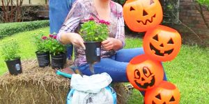 Watch The Whimsical Thing She Does With These Pumpkins For Some Fun Outdoor Decor!