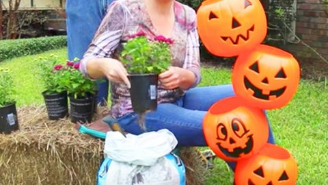 Watch The Whimsical Thing She Does With These Pumpkins For Some Fun Outdoor Decor! | DIY Joy Projects and Crafts Ideas