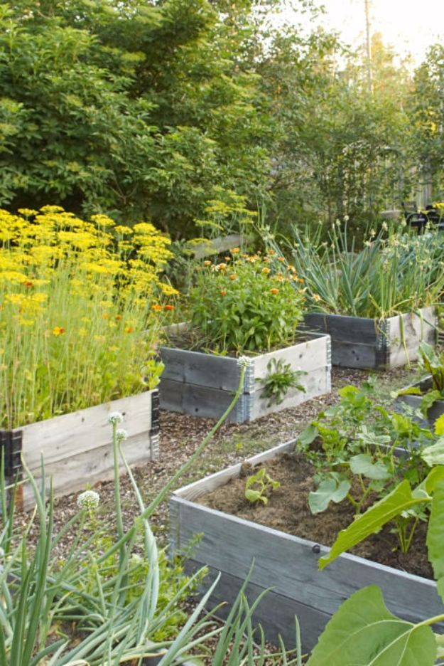 DIY Garden Beds - 3-Step Raised Garden Bed - Easy Gardening Ideas for Raised Beds and Planter Boxes - Free Plans, Tutorials and Step by Step Tutorials for Building and Landscaping Projects - Update Your Backyard and Gardens With These Cheap Do It Yourself Ideas http://diyjoy.com/diy-garden-beds