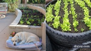 35 DIY Garden Beds For A Perfect Backyard Garden