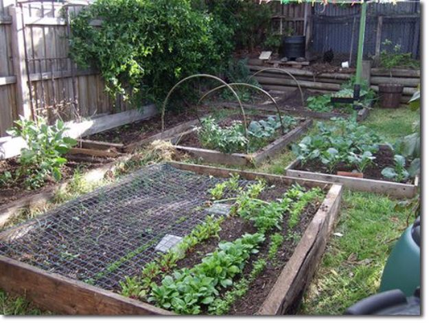 DIY Garden Beds - Cheap Raised Garden Bed - Easy Gardening Ideas for Raised Beds and Planter Boxes - Free Plans, Tutorials and Step by Step Tutorials for Building and Landscaping Projects - Update Your Backyard and Gardens With These Cheap Do It Yourself Ideas http://diyjoy.com/diy-garden-beds
