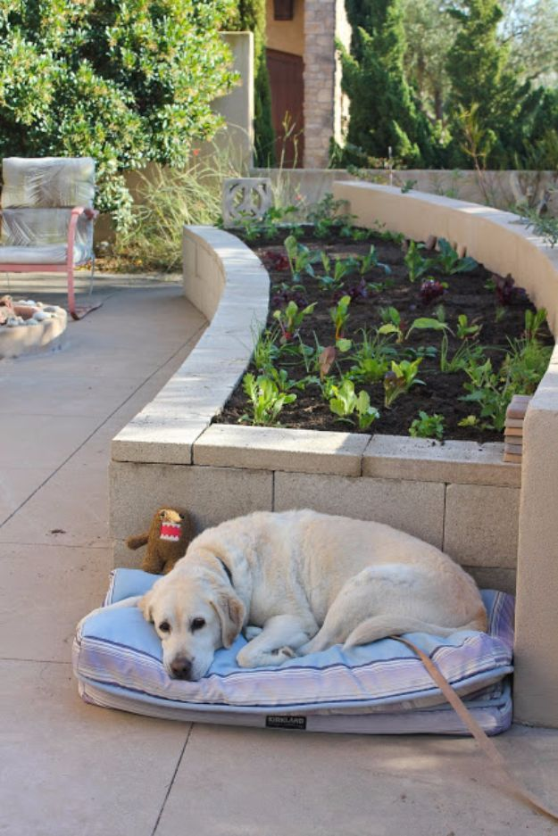 DIY Garden Beds - DIY Concrete Vegetable Garden - Easy Gardening Ideas for Raised Beds and Planter Boxes - Free Plans, Tutorials and Step by Step Tutorials for Building and Landscaping Projects - Update Your Backyard and Gardens With These Cheap Do It Yourself Ideas http://diyjoy.com/diy-garden-beds