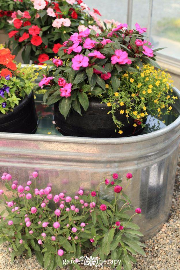 Small Modern Garden Pots