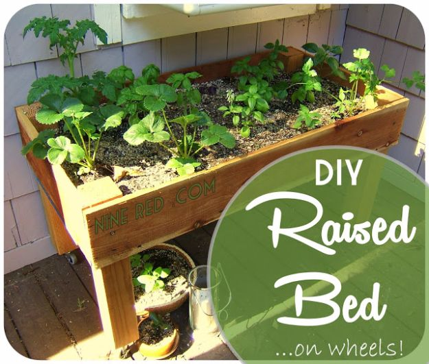DIY Garden Beds - DIY Simple Raised Bed On Wheels - Easy Gardening Ideas for Raised Beds and Planter Boxes - Free Plans, Tutorials and Step by Step Tutorials for Building and Landscaping Projects - Update Your Backyard and Gardens With These Cheap Do It Yourself Ideas http://diyjoy.com/diy-garden-beds