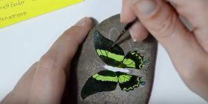 She Draws A Butterfly On A River Rock And Watch How She Transforms It With Paint!