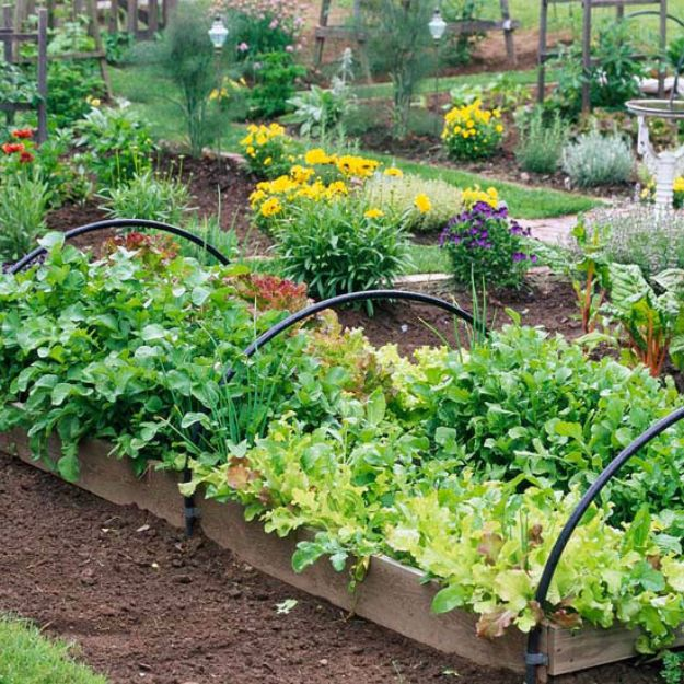 DIY Garden Beds - Raised Vegetable Garden Bed - Easy Gardening Ideas for Raised Beds and Planter Boxes - Free Plans, Tutorials and Step by Step Tutorials for Building and Landscaping Projects - Update Your Backyard and Gardens With These Cheap Do It Yourself Ideas http://diyjoy.com/diy-garden-beds