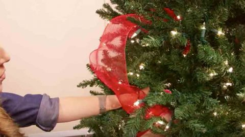 if you are wondering how the professionals put ribbon on a tree watch how she does this - How To Put Ribbon On A Christmas Tree