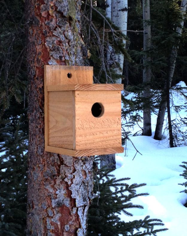 DIY Bird Houses - $1 Modern Birdhouse - Easy Bird House Ideas for Kids and Adult To Make - Free Plans and Tutorials for Wooden, Simple, Upcyle Designs, Recycle Plastic and Creative Ways To Make Rustic Outdoor Decor and a Home for the Birds - Fun Projects for Your Backyard This Summer