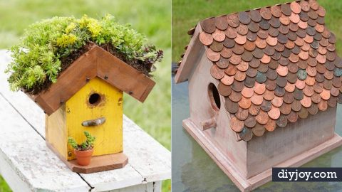 34 DIY Bird Houses For Your New Feathered Friends   DIY Joy Projects and Crafts Ideas