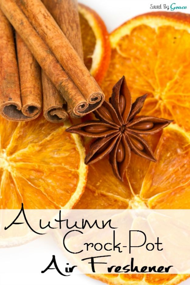 DIY Home Fragrance Ideas - Autumn Crock-Pot Air Freshener - Easy Ways To Make your House and Home Smell Good - Essential Oils, Diffusers, DIY Lampe Berger Oil, Candles, Room Scents and Homemade Recipes for Odor Removal - Relaxing Lavender, Fresh Clean Smells, Lemon, Herb http://diyjoy.com/diy-home-fragrance-ideas