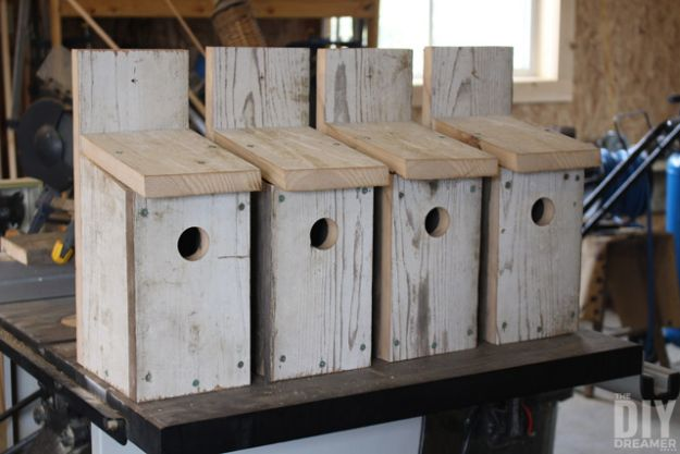 DIY Bird Houses - Blue Bird Birdhouses - Easy Bird House Ideas for Kids and Adult To Make - Free Plans and Tutorials for Wooden, Simple, Upcyle Designs, Recycle Plastic and Creative Ways To Make Rustic Outdoor Decor and a Home for the Birds - Fun Projects for Your Backyard This Summer
