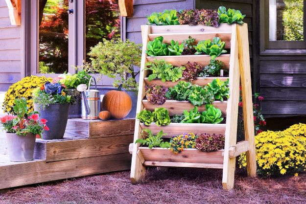 Container Gardening Ideas - Build a Vertical Herb Planter - Easy Garden Projects for Containers and Growing Plants in Small Spaces - DIY Potting Tips and Planter Boxes for Vegetables, Herbs and Flowers - Simple Ideas for Beginners -Shade, Full Sun, Pation and Yard Landscape Idea tutorials http://diyjoy.com/container-gardening-ideas