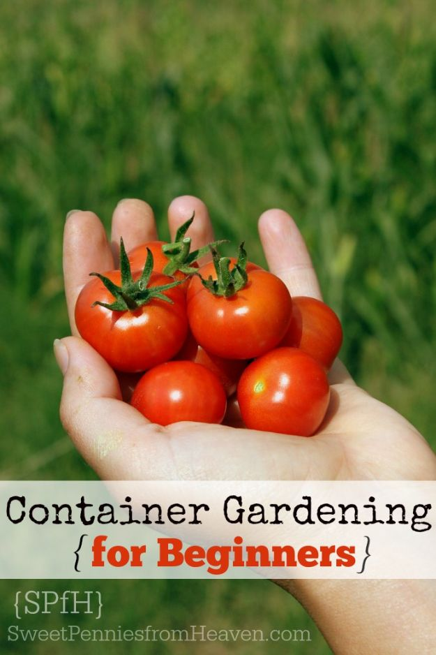 Container Gardening Ideas - Container Gardening For Beginners - Easy Garden Projects for Containers and Growing Plants in Small Spaces - DIY Potting Tips and Planter Boxes for Vegetables, Herbs and Flowers - Simple Ideas for Beginners -Shade, Full Sun, Pation and Yard Landscape Idea tutorials http://diyjoy.com/container-gardening-ideas