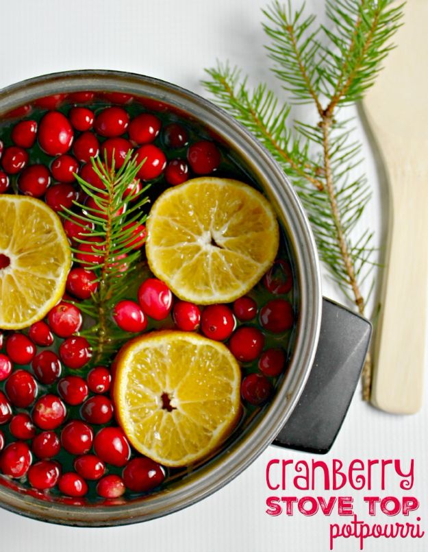 DIY Home Fragrance Ideas - Cranberry Stove Top Potpourri - Easy Ways To Make your House and Home Smell Good - Essential Oils, Diffusers, DIY Lampe Berger Oil, Candles, Room Scents and Homemade Recipes for Odor Removal - Relaxing Lavender, Fresh Clean Smells, Lemon, Herb