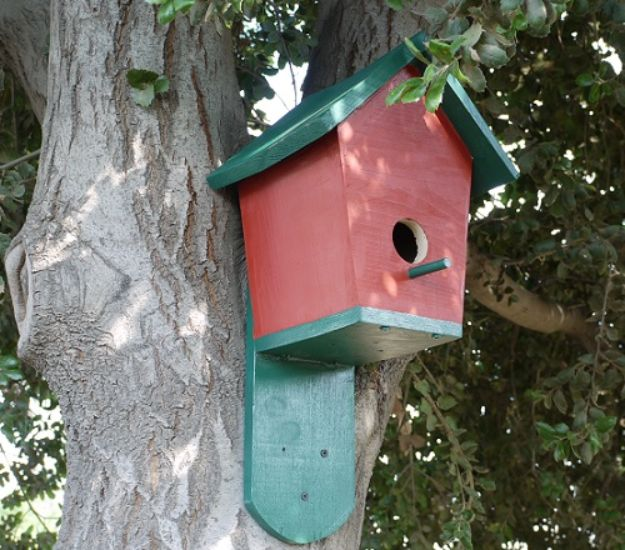 DIY Bird Houses - DIY Bluebird House - Easy Bird House Ideas for Kids and Adult To Make - Free Plans and Tutorials for Wooden, Simple, Upcyle Designs, Recycle Plastic and Creative Ways To Make Rustic Outdoor Decor and a Home for the Birds - Fun Projects for Your Backyard This Summer