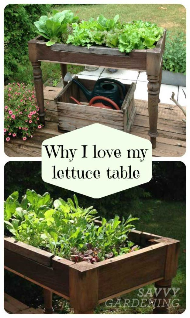 Container Gardening Ideas - DIY Lettuce Table - Easy Garden Projects for Containers and Growing Plants in Small Spaces - DIY Potting Tips and Planter Boxes for Vegetables, Herbs and Flowers - Simple Ideas for Beginners -Shade, Full Sun, Pation and Yard Landscape Idea tutorials http://diyjoy.com/container-gardening-ideas