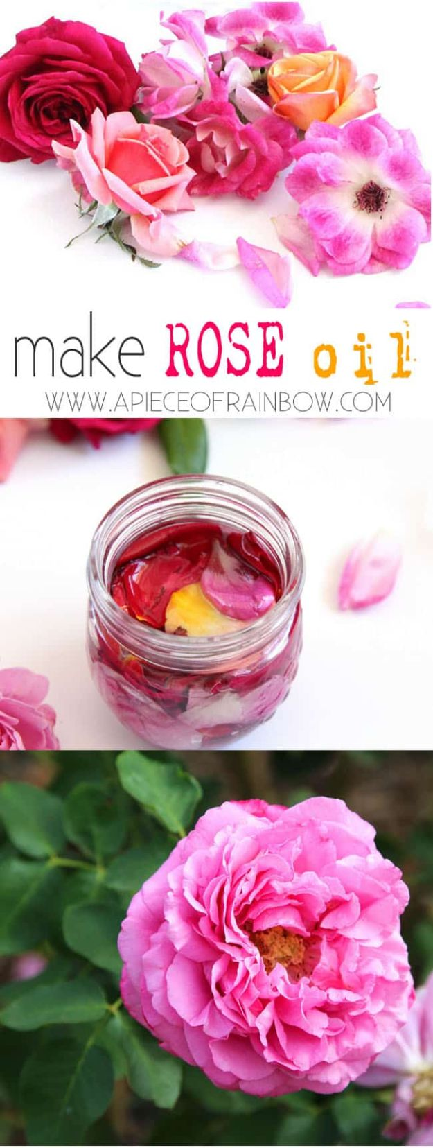 Rose Crafts - DIY Rose Oil - Easy Craft Projects With Roses - Paper Flowers, Quilt Patterns, DIY Rose Art for Kids - Dried and Real Roses for Wall Art and Do It Yourself Home Decor - Mothers Day Gift Ideas - Fake Rose Arrangements That Look Amazing - Cute Centerrpieces and Crafty DIY Gifts With A Rose http://diyjoy.com/rose-crafts