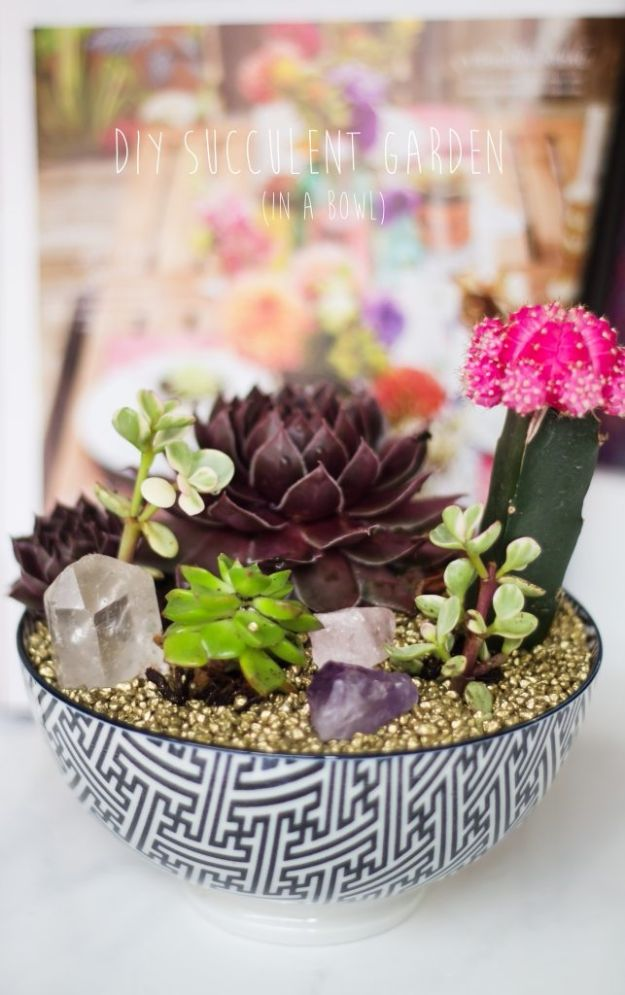 Container Gardening Ideas - DIY Succulent Bowl Garden - Easy Garden Projects for Containers and Growing Plants in Small Spaces - DIY Potting Tips and Planter Boxes for Vegetables, Herbs and Flowers - Simple Ideas for Beginners -Shade, Full Sun, Pation and Yard Landscape Idea tutorials http://diyjoy.com/container-gardening-ideas