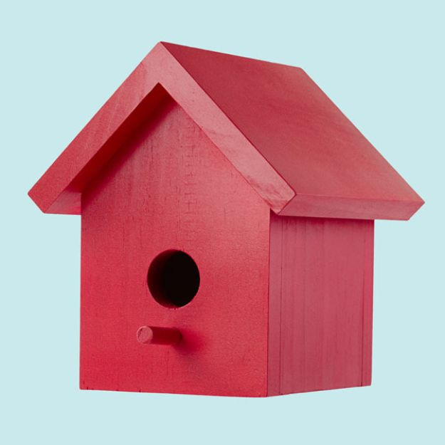 DIY Bird Houses - Easy One-Board Bird House - Easy Bird House Ideas for Kids and Adult To Make - Free Plans and Tutorials for Wooden, Simple, Upcyle Designs, Recycle Plastic and Creative Ways To Make Rustic Outdoor Decor and a Home for the Birds - Fun Projects for Your Backyard This Summer