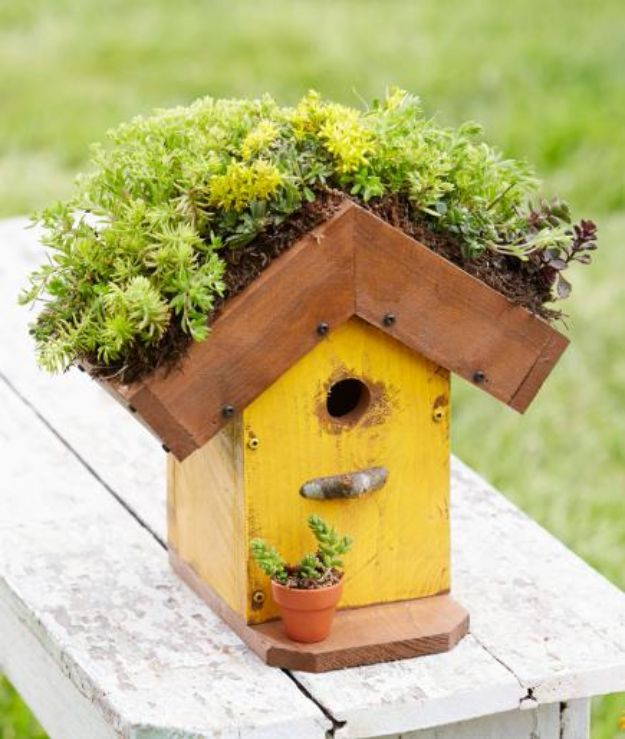 DIY Bird Houses - Living-Roof Birdhouse - Easy Bird House Ideas for Kids and Adult To Make - Free Plans and Tutorials for Wooden, Simple, Upcyle Designs, Recycle Plastic and Creative Ways To Make Rustic Outdoor Decor and a Home for the Birds - Fun Projects for Your Backyard This Summer http://diyjoy.com/diy-bird-houses