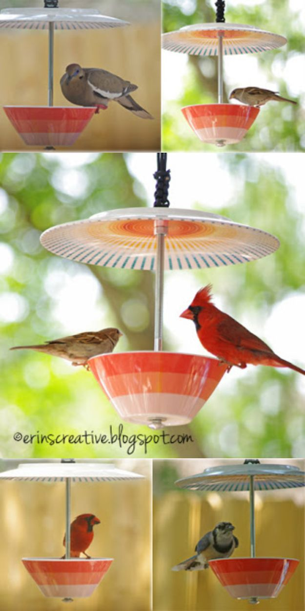 DIY Bird Feeders - Make Your Own Bird Feeder - Easy Do It Yourself Homemade Bird Feeder Ideas from Mason Jar, Wooden, Wine Bottle, Milk Jug, Plastic, Dollar Store Supplies - Squirrel Proof, Unique and Creative Tutorials That Make Cool DIY Gifts #diyideas #birds