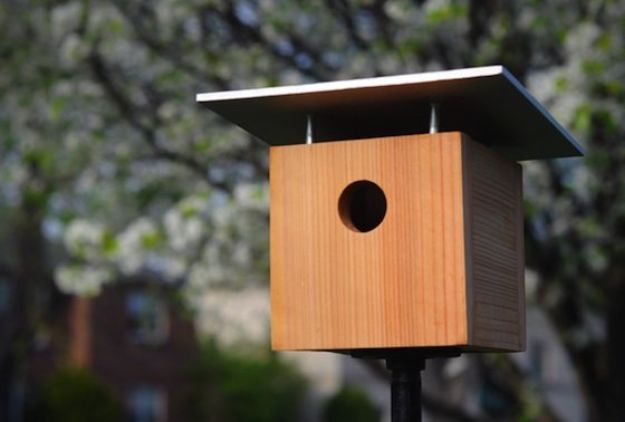 DIY Bird Houses - Make a Classic Birdhouse - Easy Bird House Ideas for Kids and Adult To Make - Free Plans and Tutorials for Wooden, Simple, Upcyle Designs, Recycle Plastic and Creative Ways To Make Rustic Outdoor Decor and a Home for the Birds - Fun Projects for Your Backyard This Summer http://diyjoy.com/diy-bird-houses
