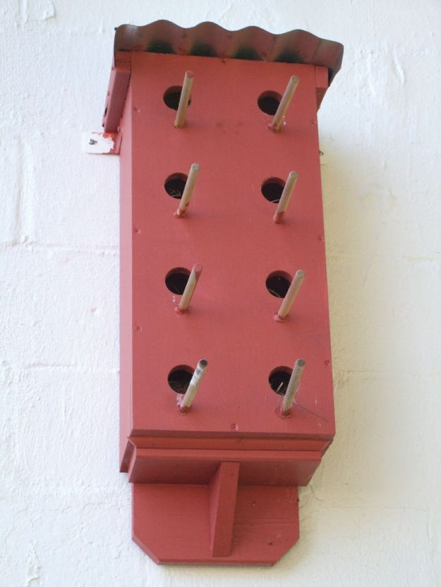DIY Bird Houses - Simple Birdhouse Plan - Easy Bird House Ideas for Kids and Adult To Make - Free Plans and Tutorials for Wooden, Simple, Upcyle Designs, Recycle Plastic and Creative Ways To Make Rustic Outdoor Decor and a Home for the Birds - Fun Projects for Your Backyard This Summer http://diyjoy.com/diy-bird-houses